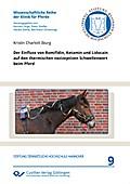 Der Einfluss von Romifidin, Ketamin und Lidocain auf den thermischen nozizeptiven Schwellenwert beim Pferd