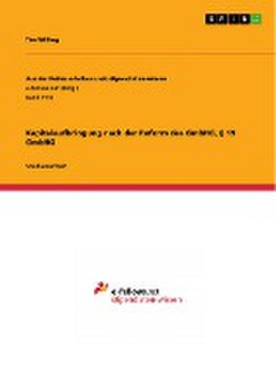 Kapitalaufbringung nach der Reform des GmbHG, § 19 GmbHG