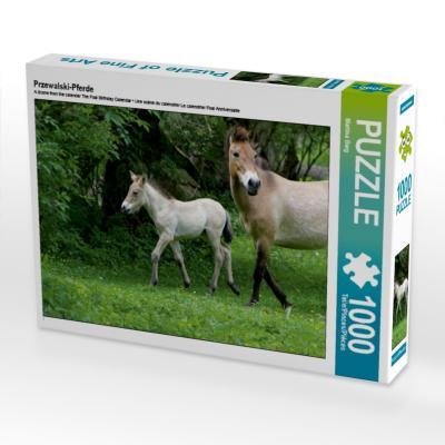 Przewalski-Pferde (Puzzle)