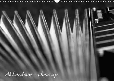Akkordeon - close up (Wandkalender 2018 DIN A3 quer)
