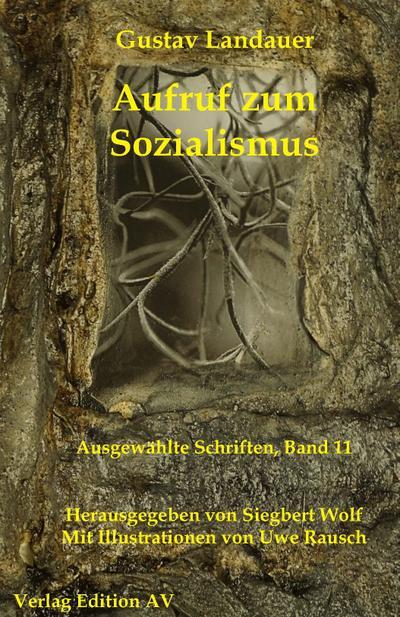 Aufruf zum Sozialismus: Ein Vortrag (Gustav Landauer: Ausgewählte Schriften)