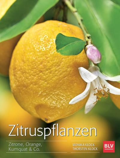 Zitruspflanzen; Zitrone, Orange, Kumquat & Co.; Deutsch; 122 farb. Abb. 13 Ill.