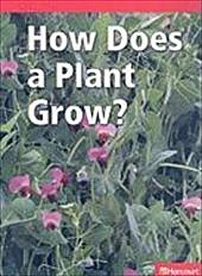 HOW DOES A PLANT GROW