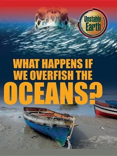 What Happens If We Overfish the Oceans?