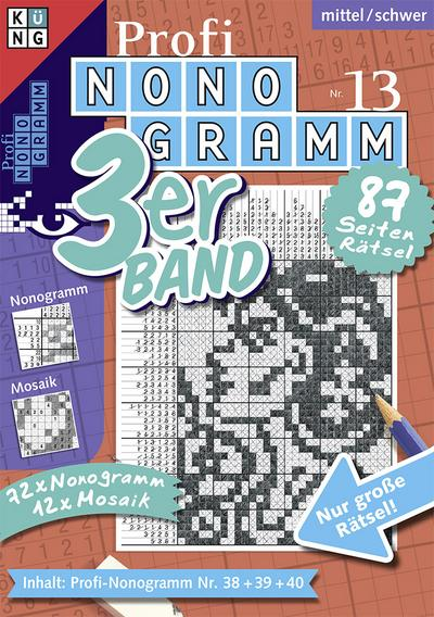 Profi-Nonogramm 3er-Band Nr. 13
