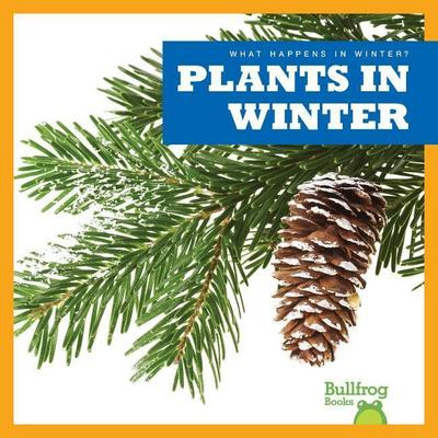 Plants in Winter
