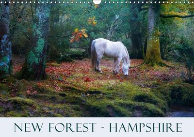New Forest Hampshire (Wall Calendar 2019 DIN A3 Landscape)