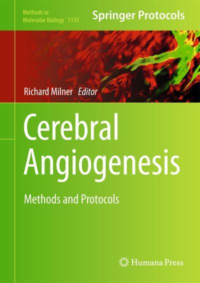 Cerebral Angiogenesis