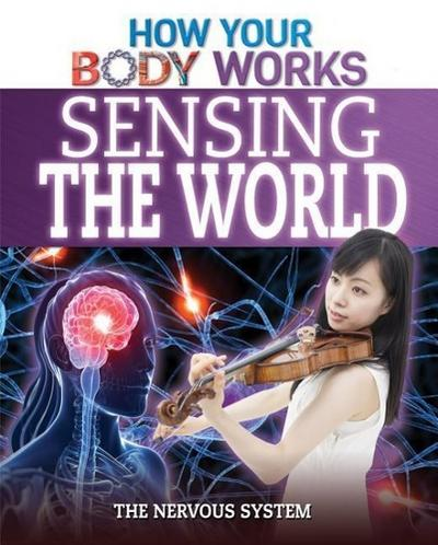 Sensing the World: The Nervous System
