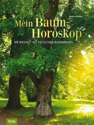 Mein Baumhoroskop: Die Weisheit des keltischen Baumkreises
