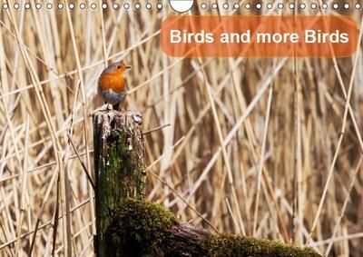 Birds and more Birds (Wall Calendar 2019 DIN A4 Landscape)