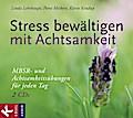 Stress bewältigen mit Achtsamkeit: MBSR- und  ...