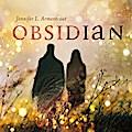 Obsidian 05: Opposition. Schattenblitz
