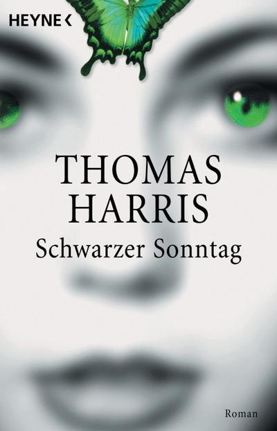 Schwarzer Sonntag: Roman