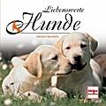 Liebenswerte Hunde; Geschenkbücher; Deutsch;  ...