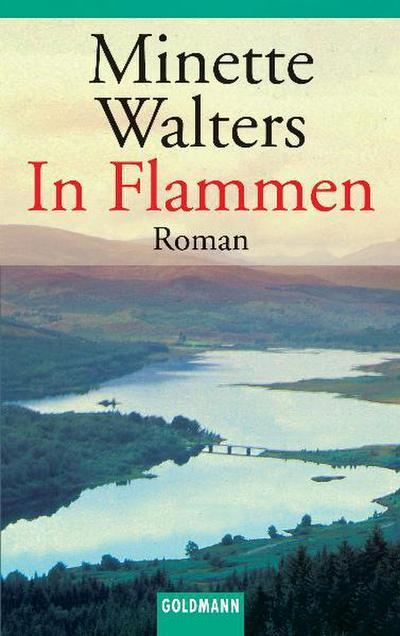 In Flammen: Roman