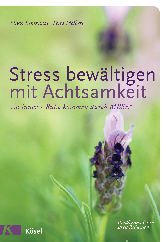 Stress bewältigen mit Achtsamkeit Linda Lehrhaupt