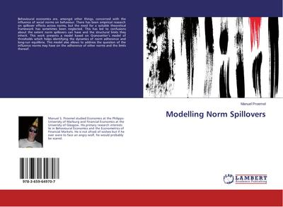 Modelling Norm Spillovers
