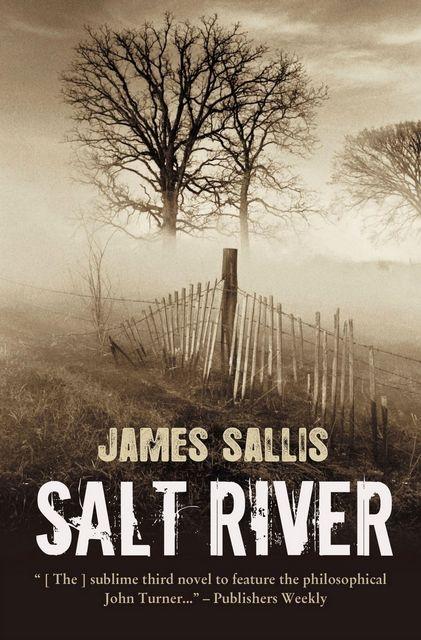 Salt River, James Sallis