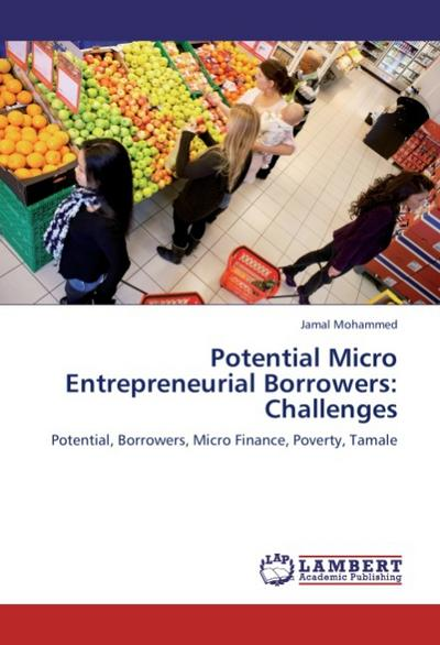 Potential Micro Entrepreneurial Borrowers: Challenges