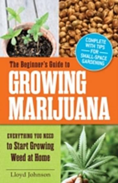 Beginner's Guide to Growing Marijuana