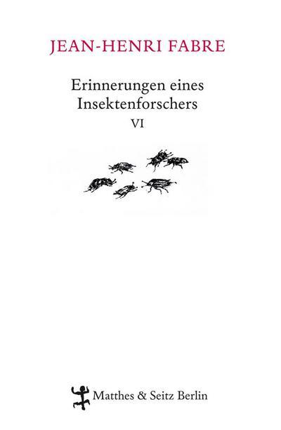 Erinnerungen eines Insektenforschers VI
