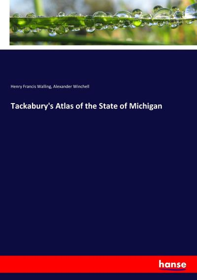 Tackabury's Atlas of the State of Michigan