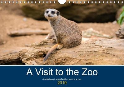 A Visit to the Zoo (Wall Calendar 2019 DIN A4 Landscape)
