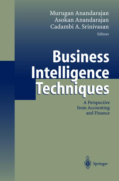 Business intelligence techniques : a perspective from accounting and finance