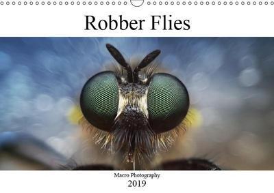 Robber Flies (Wall Calendar 2019 DIN A3 Landscape)