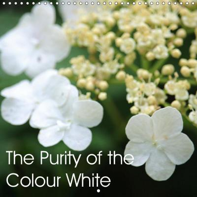 The Purity of the Colour White (Wall Calendar 2019 300 × 300 mm Square)