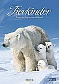 Tierkinder 2019 Kalender