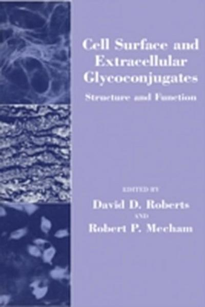 Cell Surface and Extracellular Glycoconjugates