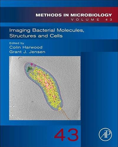 Imaging Bacterial Molecules, Structures and Cells