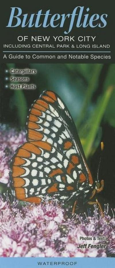 Butterflies of New York City, Incl. Central Park & Long Island: A Guide to Common & Notable Species