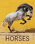 The World's Most Beautiful Horses / Die schönsten Pferde der Welt / Los caballos mas bellos del mundo
