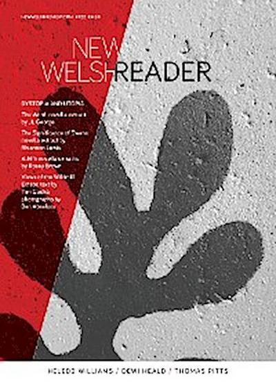 New Welsh Reader 122