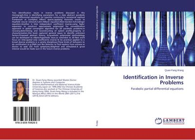 Identification in Inverse Problems