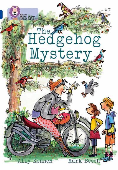 The Hedgehog Mystery