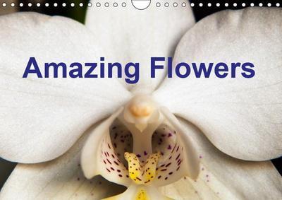 Amazing flowers (Wall Calendar 2019 DIN A4 Landscape)