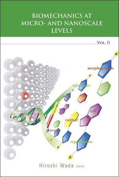 Biomechanics at Micro- And Nanoscale Levels - Volume II: 2