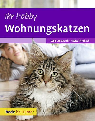 Ihr Hobby Wohnungskatzen