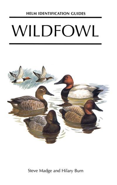 Wildfowl