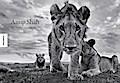 Anup Shah - Die letzten Tiere der Mara