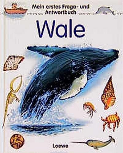 Mein erstes Frage- und Antwortbuch, Wale - Loewe Verlag - Gebundene Ausgabe, Deutsch, Angelika Stubner, Monika Nadler, Hans G. Schellenberger, Mein erstes Frage- und Antwortbuch, Mein erstes Frage- und Antwortbuch