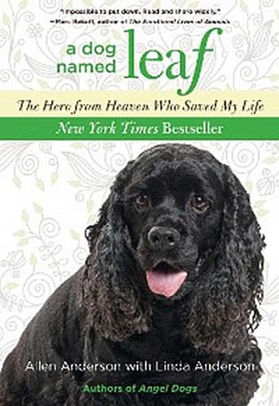 Dog Named Leaf