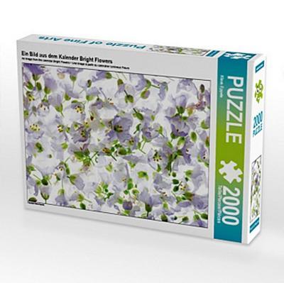 Ein Bild aus dem Kalender Bright Flowers (Puzzle)