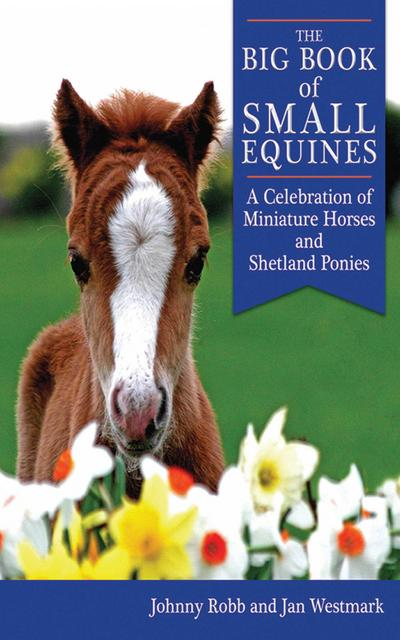 Big Book of Small Equines