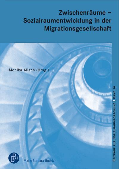 Zwischenräume - Sozialraumentwicklung in der Migrationsgesellschaft