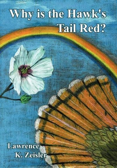 Why Is the Hawk's Tail Red?